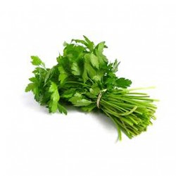 CORIANDER (BUNCH) 100G