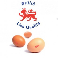 BRITISH LION EGGS 6PCS