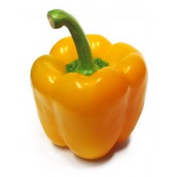 YELLOW PEPPER(EACH)