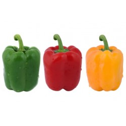 MIXED PEPPER 500G (lONDON ONLY)