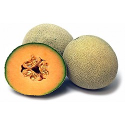 CANTALOUPE MELON (EACH)