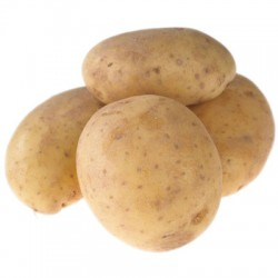 POTATOES - MARIS PIPER (LONDON ONLY)