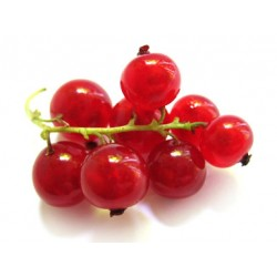 REDCURRANTS 170G (LONDON ONLY)