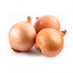 SPANISH LARGE ONION 3PCS 900G-1KG