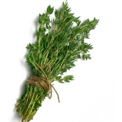 THYME 100G (LONDON ONLY)