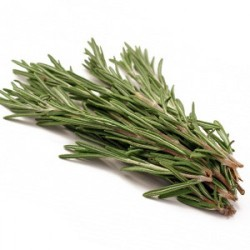 ROSEMARY 100G (LONDON ONLY)