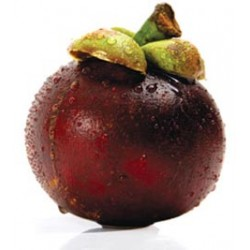 MANGOSTEEN (TRAY) 250G