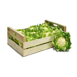 CAULIFLOWER 8PCS (BOX) (LONDON ONLY)