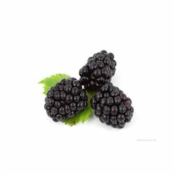 BLACKBERRIES 150G